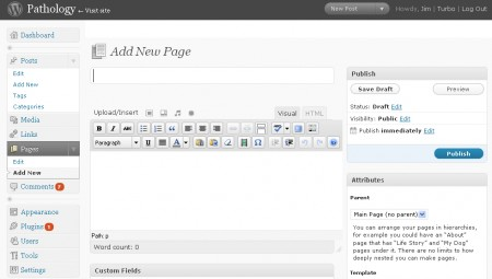 Screen Capture of WordPress authoring page