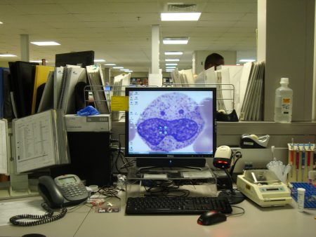 "A fun screensaver of a ""smiling"" white cell in the Hematology Lab."